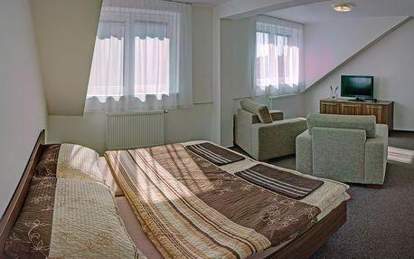 Uherské Hradiště: Penzion Na Dlouhé
