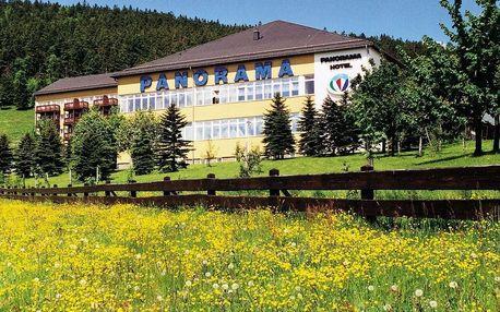 Relax v Krušných Horách s bazénem & saunou