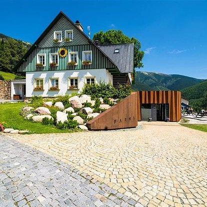 Špindlerův Mlýn - Pension SLUNEČNICE, Česko