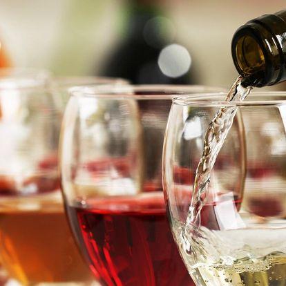 Degustace vín z Vinařství U Kapličky