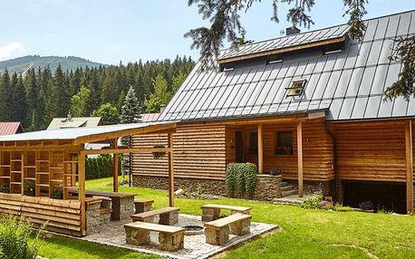 Moderní apartmán v Harrachově pro partu i rodinu