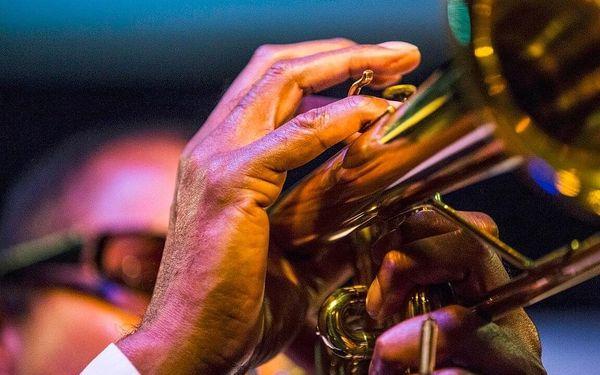 Vstup na libovolný koncert do legendárního Jazz Clubu Reduta2