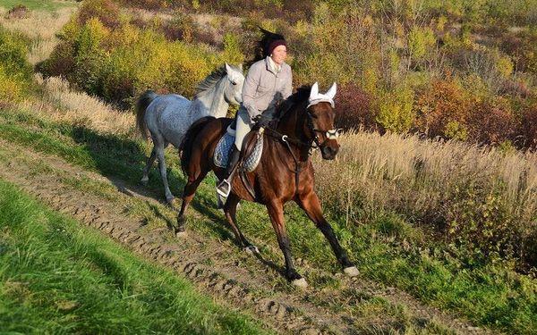 Vyjížďka na koních pro dva a doprovodný program2