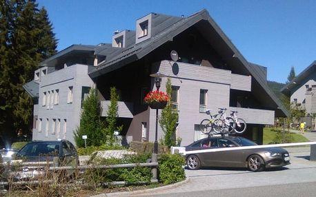 Harrachov: pobyt v apartmánu až pro 4 osoby
