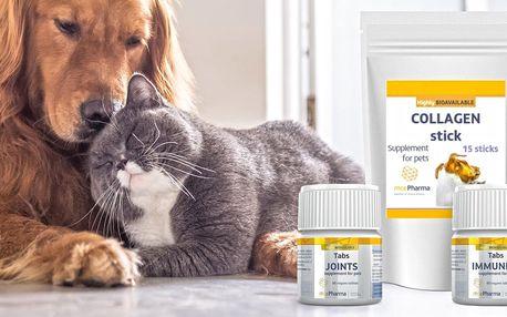 Doplňky stravy pro psy a kočky na klouby i imunitu