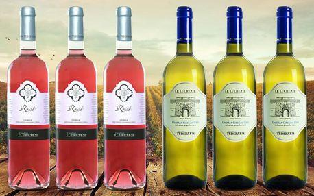 Karton italských vín: 6 lahví Grechetto i Rosé