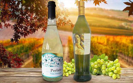 6 lahví prvotřídního bílého vína z regionu Marche