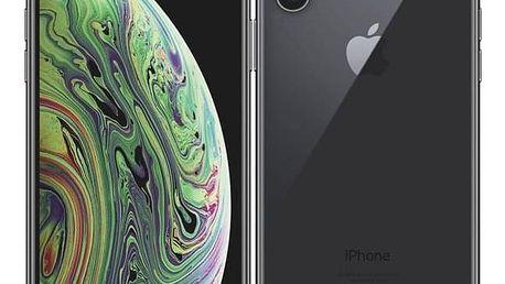 Apple iPhone Xs 256 GB - space grey (MT9H2CN/A)