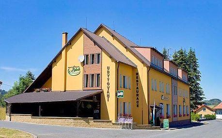 Český les: Rekreační středisko Rybník s polopenzí, privátním wellness a masáží
