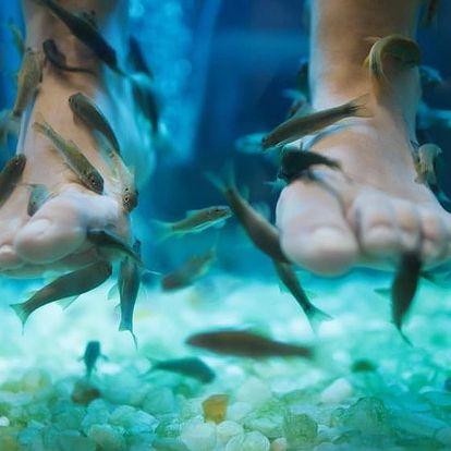 Až 120min. klasická thajská masáž + rybky Garra Rufa na 30 min.