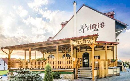 Pálava ve Wellness Hotelu Iris *** s polopenzí, vířivkou a rašelinovým zábalem