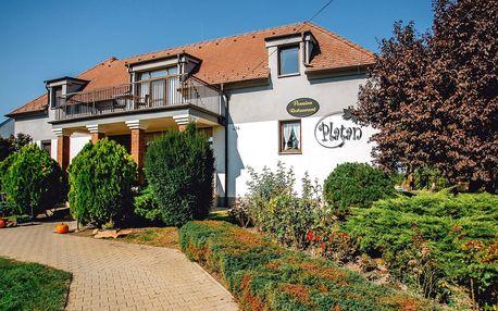 Relaxační pobyt na Slovensku: polopenze, wellness