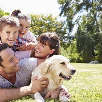 Rodinný wellness relax na Všemině v zařízení ACTIVITYPARK VŠEMINA - APARTMÁ RESORT