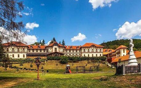 Park Hotel Erzsébet, Maďarsko, Termální lázně Maďarsko, Parádfürdő