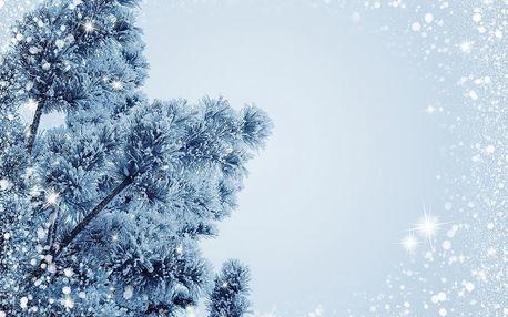 Vánoční stromeček, cukroví, štědrovečerní večeře na 3 noci v zařízení Dvorská bouda