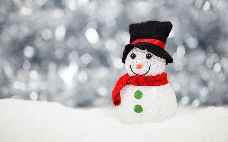 Vánoční stromeček, cukroví, štědrovečerní večeře na 4 noci v zařízení Dvorská bouda
