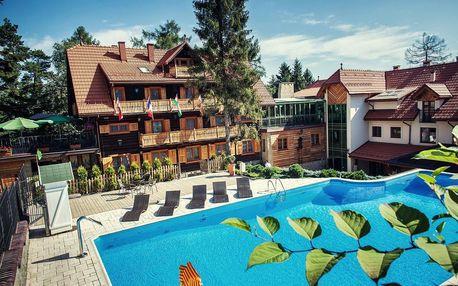 Polsko: Hotel Modrzewiówka ***
