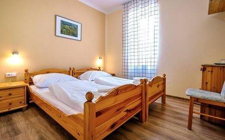 Znojmo v Hotelu Schaller *** s polopenzí, privátními saunami a kvalitním vínem