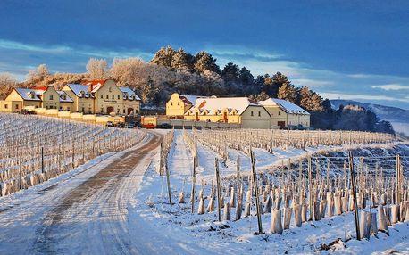 Zima ve Vinařství U Kapličky s polopenzí a wellness