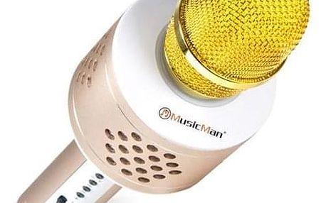 Technaxx BT-X35 s reproduktory a Bluetooth stříbrný/zlatý (4611)