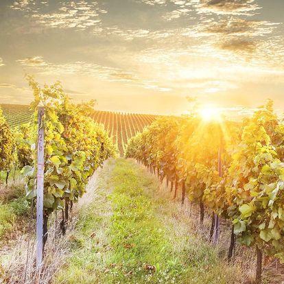 Rodinný penzion se stravou a degustací vín