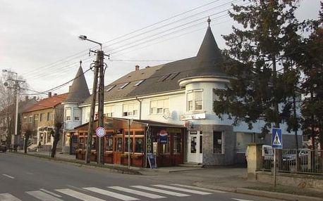 Penzion Wolf, Maďarsko, Termální lázně Maďarsko, Sárvár