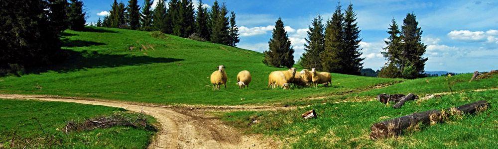 Dovolená na horách Beskydy - Valašsko