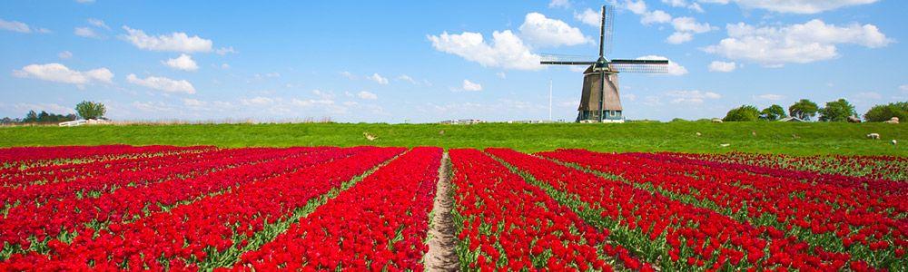 Aktivní dovolená Nizozemsko