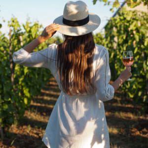 Vinobraní 2018: Průvodce slavnostmi vína