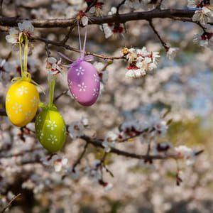 Kam na Velikonoce? Do města, na jarmark, za tradicí